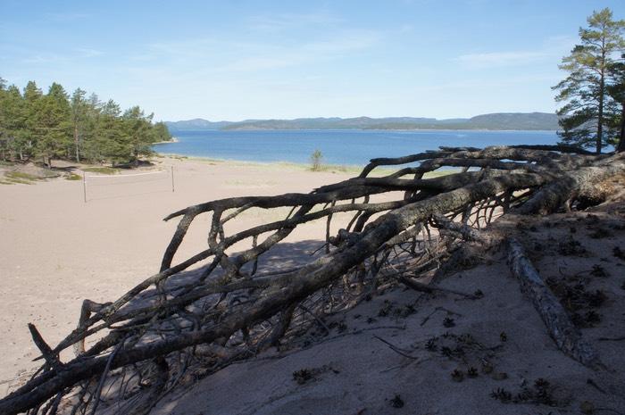 bevara världsarvet höga kusten